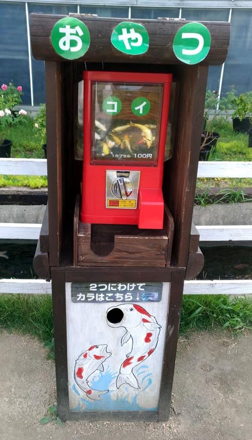 エサ100円ガチャガチャ