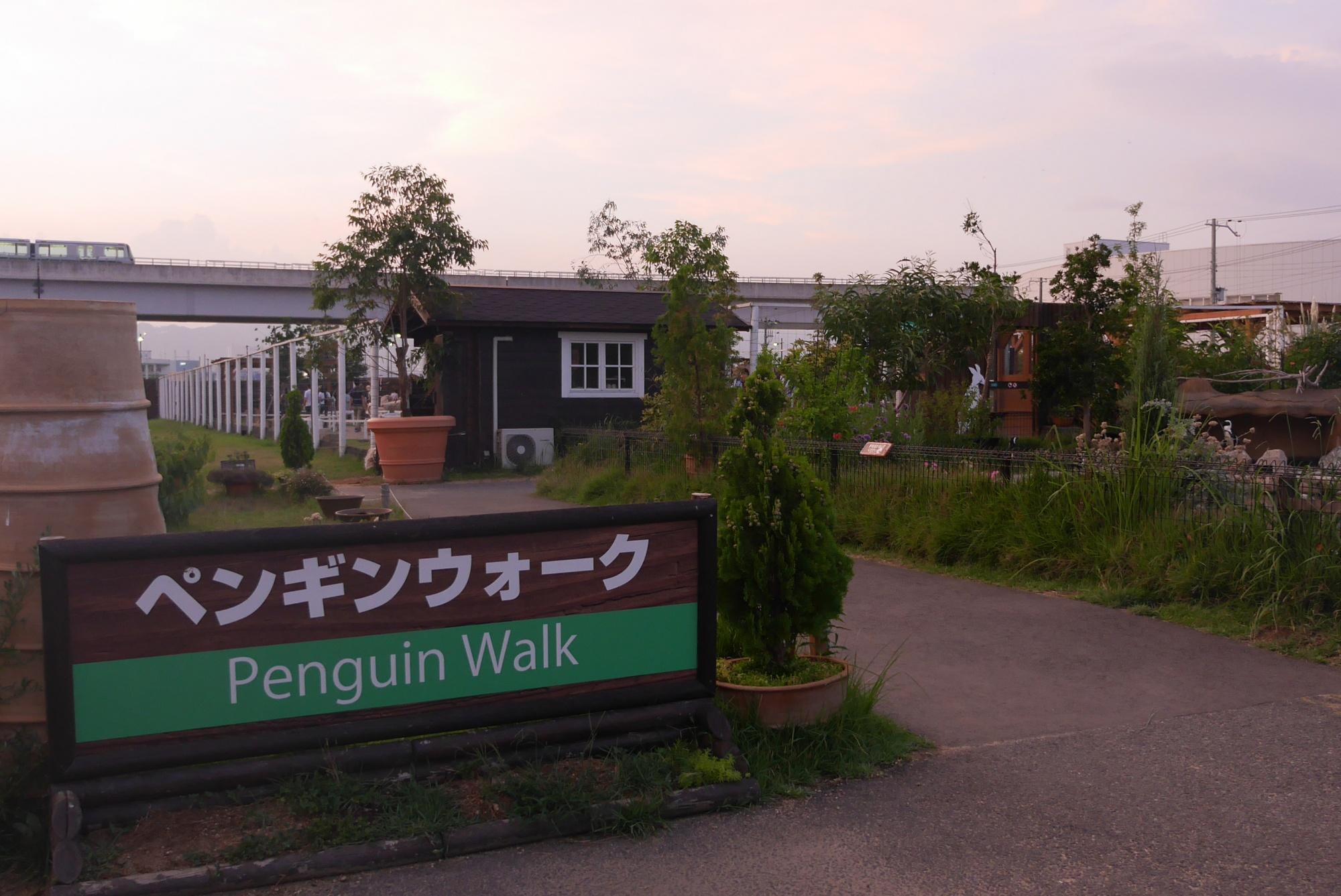 ペンギンウォーク(Penguin walk)