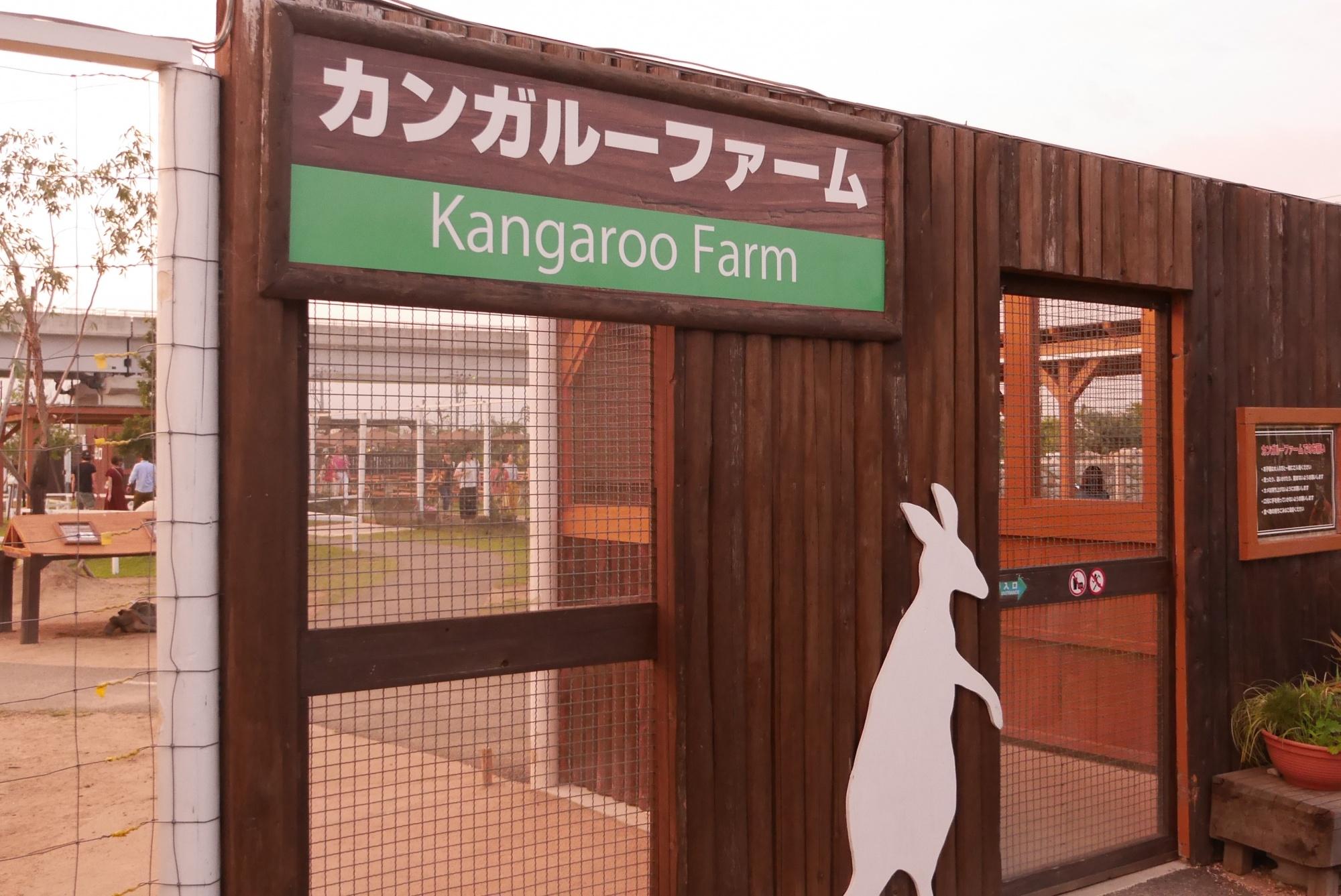 カンガルーファーム(Kangaroo Farm)