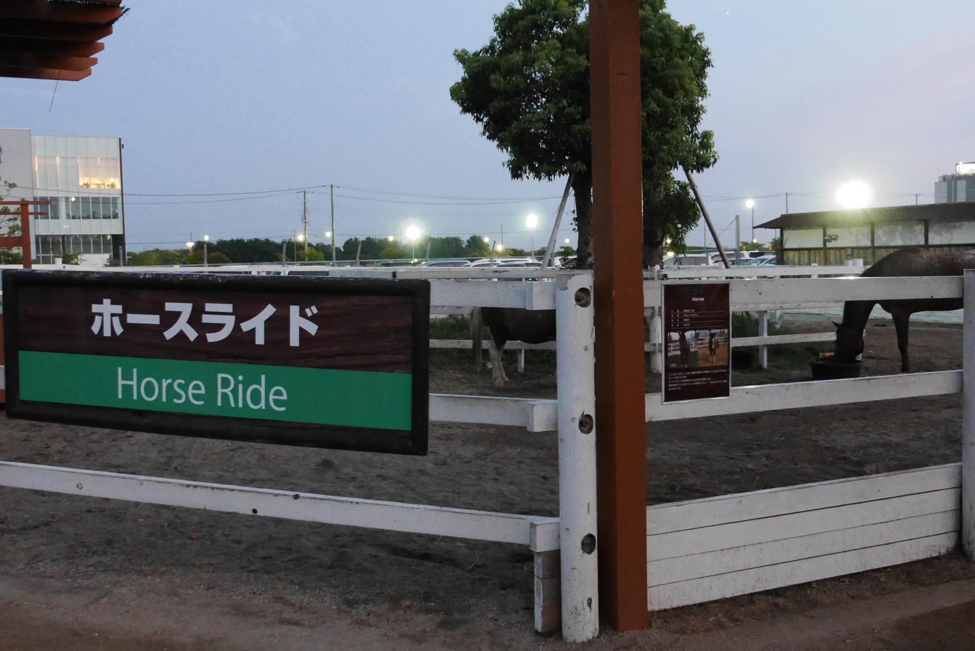 ホースライド(Horse Ride)