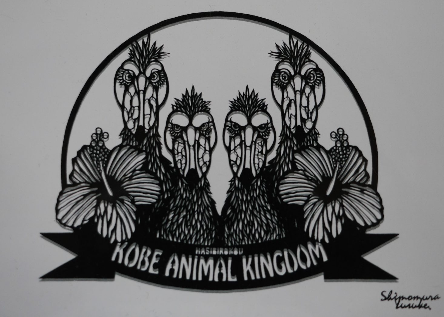 王国内の4羽